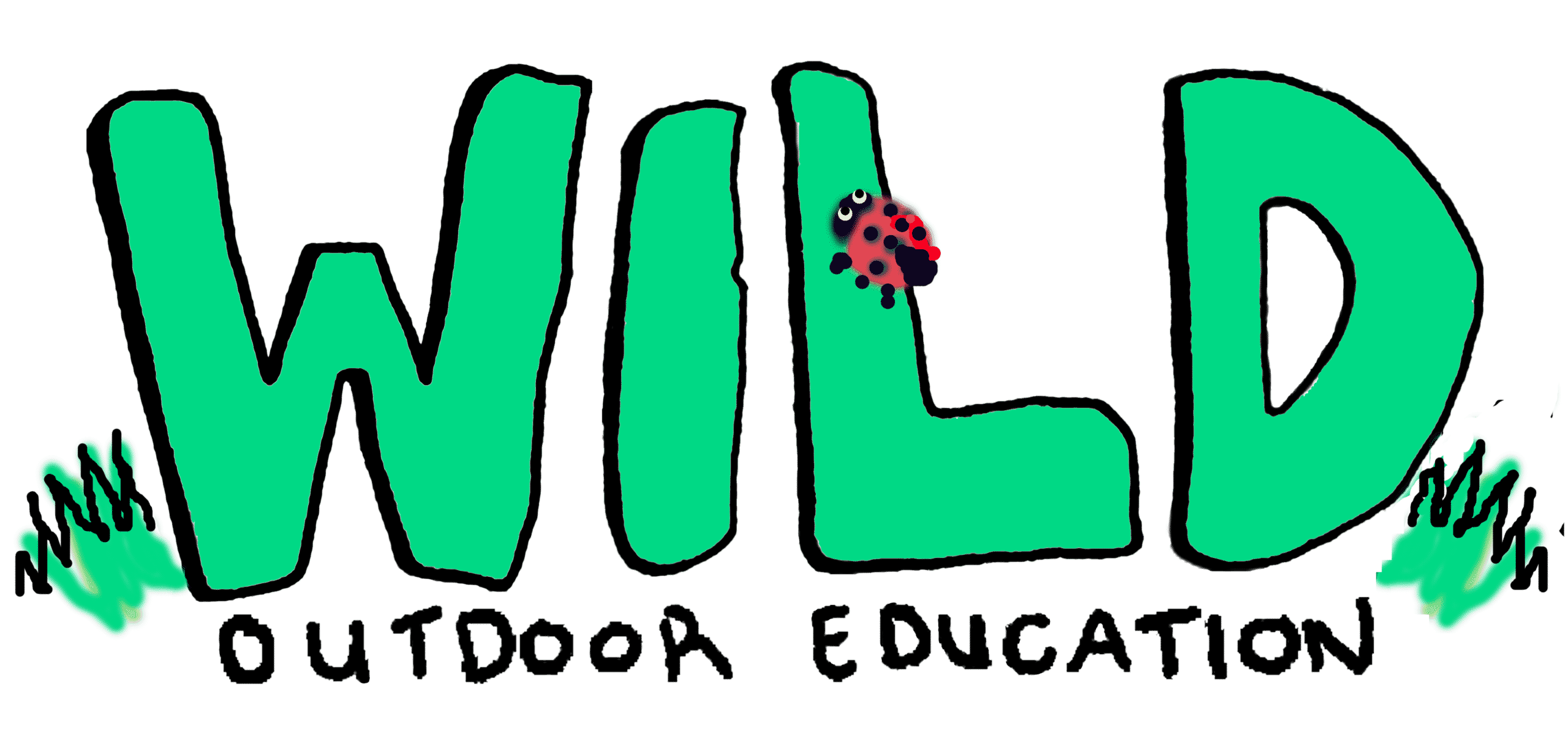Image result for outdoor education day